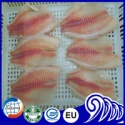 frozen tilapia fillet - product's photo