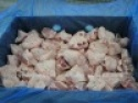 frozen turkey tails - product's photo