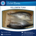 yellowfin tuna - product's photo