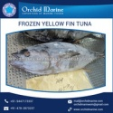 best yellowfin tuna available from top factory - product's photo