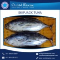 frozen tuna fish  - product's photo