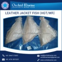 best frozen whole round leather jacket fish  - product's photo