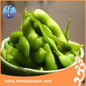 frozen soybean - product's photo