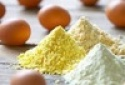 white egg powder - product's photo