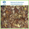 mushroom frozen boletus luteus - product's photo