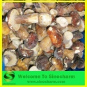 frozen wild boletus mushrooms - product's photo