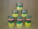 new crop canned mushroom champignon in brine - product's photo
