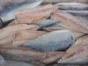 frozen mackerel fillets - product's photo