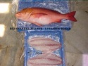frozen red snapper - product's photo