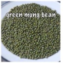 dried green mung bean from viet nam good packaging - product's photo