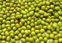 high quality vietnam green mung bean - product's photo