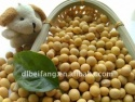 organic soybeans - product's photo