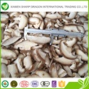 wholesale bulk grade a iqf frozen shiitake mushrooms - product's photo