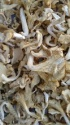 high quality flower shiitake mushroom - product's photo