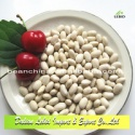 new crop small beans japanese type white kidney beans - product's photo