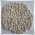 white kidney beans square type,new arrival - product's photo