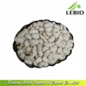 new crop large white kidney beans/bean food - product's photo