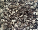 dried truffle tuber indicum black truffle - product's photo
