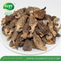 top quality nature plant dried black morels morchella new crop dried wild morels - product's photo
