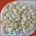 high quality pure white kidney bean prices - product's photo