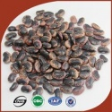 dark red speckled kidney beans supply all variety beans - product's photo