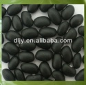 black kidney bean,black bean,bean factory - product's photo