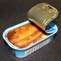 canned tuna in fish - product's photo