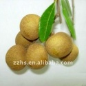 canned longan in heavy syrup - product's photo
