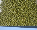 green mung bean - product's photo