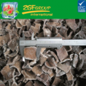 high quality frozen diced black fungus, black fungus chunks - product's photo