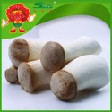 artificial cultivated coprinus edible fresh mushroom - product's photo