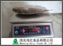300-500g frozen tilapia fish - product's photo