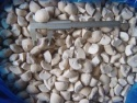 iqf frozen white mushroom / frozen champignon - product's photo