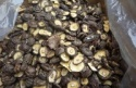 new crop iqf frozen shiitake mushrooms - product's photo