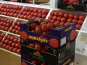turkish tomato - product's photo