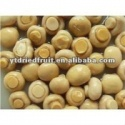 salted white button mushroom in brine - product's photo