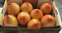 honey pomelo fruits - product's photo