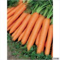 gizmar ozel egitim carrots - product's photo