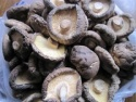 exported dried shiitake mushroom smooth - product's photo