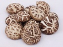 dried white flower shiitake mushroom 3-5cm - product's photo