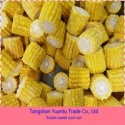sweet corn - product's photo