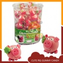 pig shape custom vitamin gummy candies - product's photo