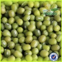 new crop mung bean - product's photo