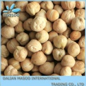 dried iranian desi chickpea - product's photo