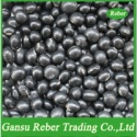 small black kidney beans with green kernel - product's photo