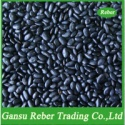small black kidney beans flat type - product's photo