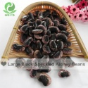 dark purple speckled kidney beans pinto bean - product's photo