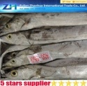frozen ribbon fish 450-550g - product's photo