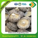 shiitake mushrooms dried from henan - product's photo
