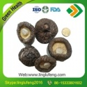 dried black face shiitake mushroom  - product's photo